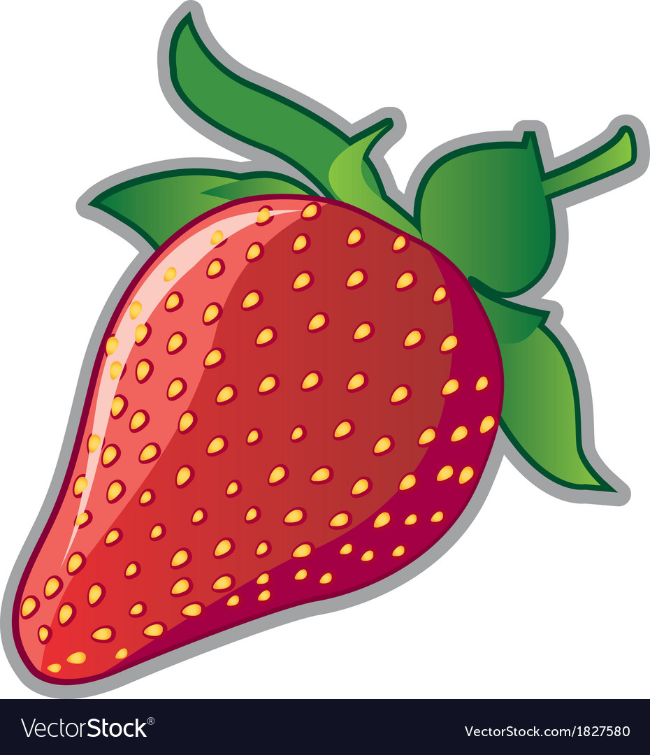 Strawberry3 vector | Price: 1 Credit (USD $1)