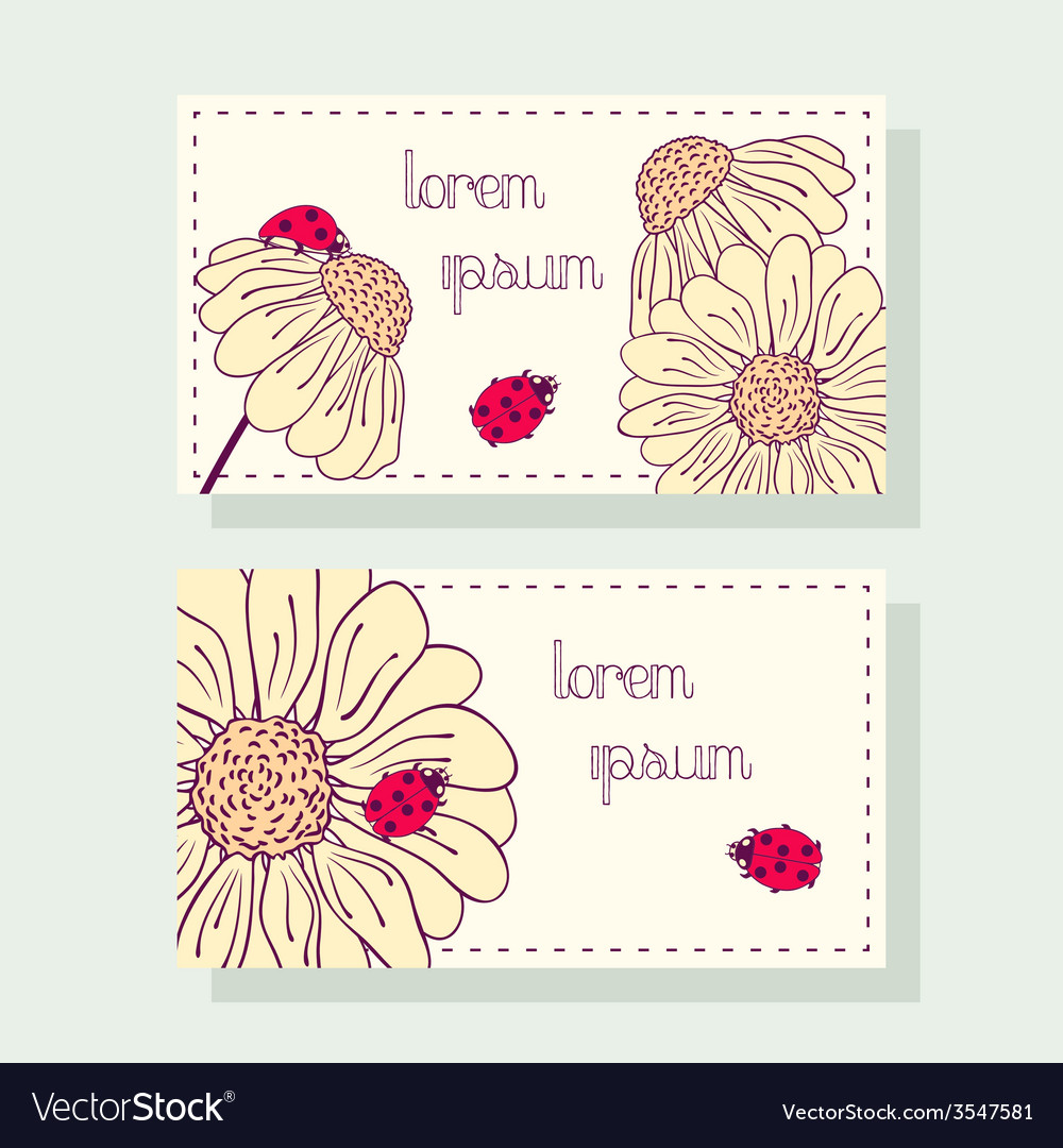 Business card set with ladybug and daisy vector | Price: 1 Credit (USD $1)