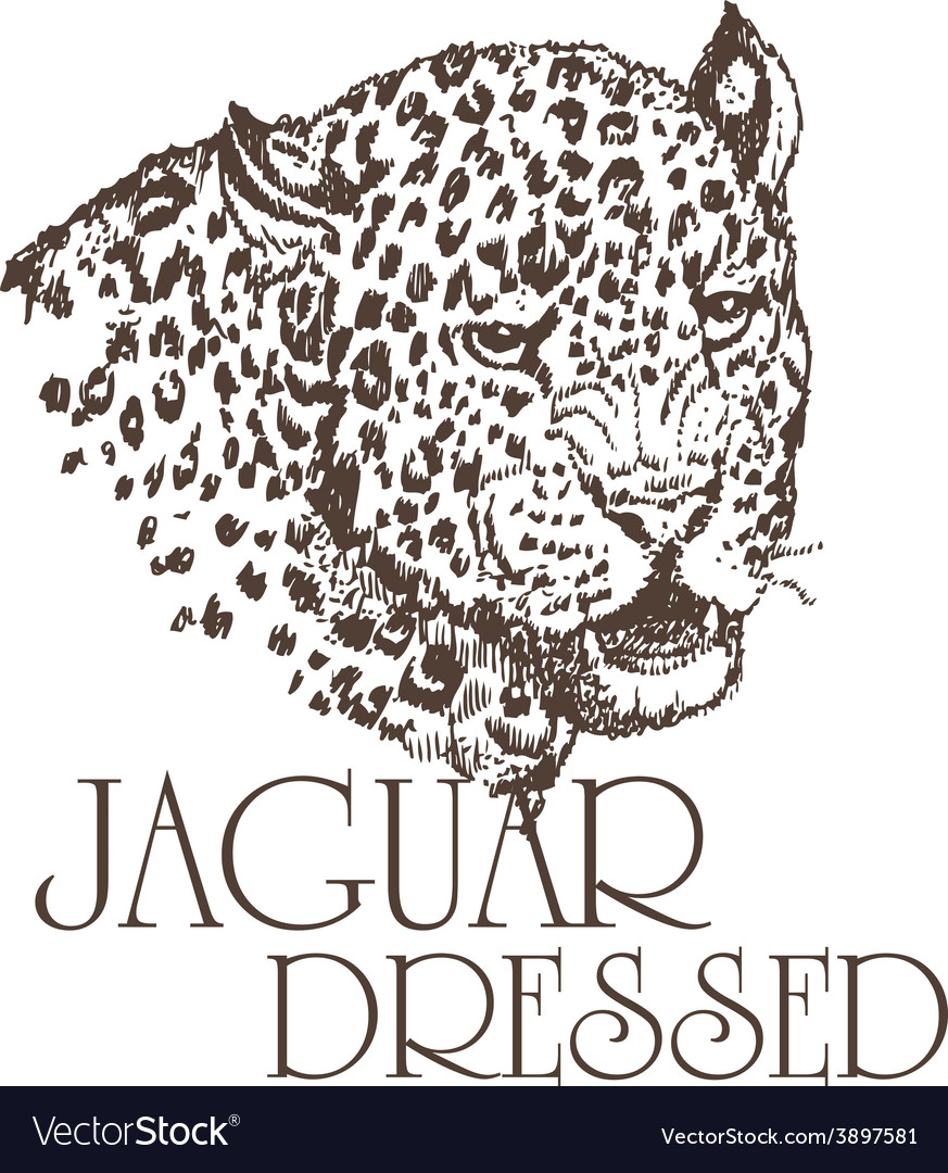 Jaguar vector   Price: 1 Credit (USD $1)