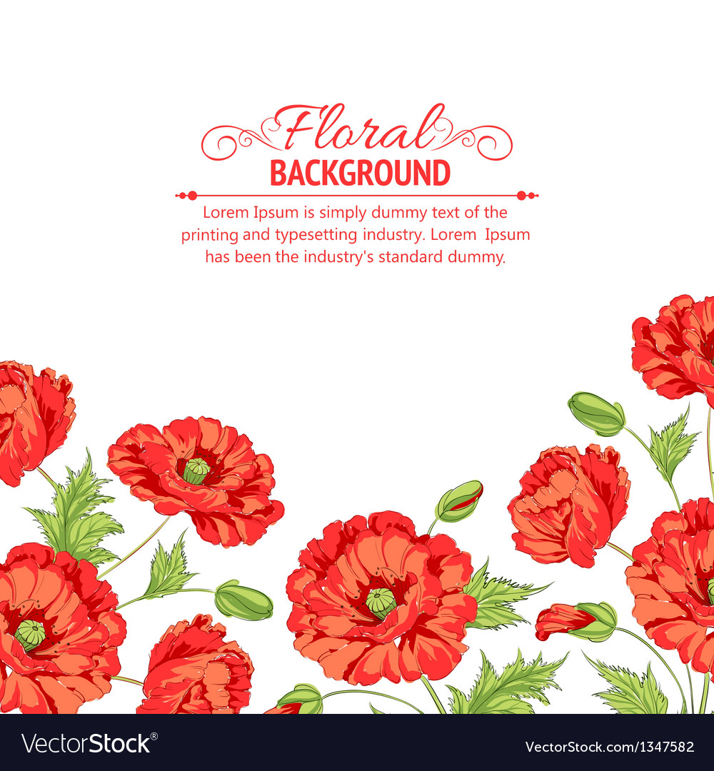 Red poppy card vector | Price: 1 Credit (USD $1)
