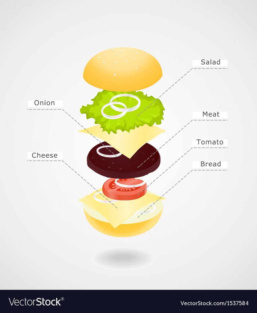 Composition of hamburger vector | Price: 1 Credit (USD $1)