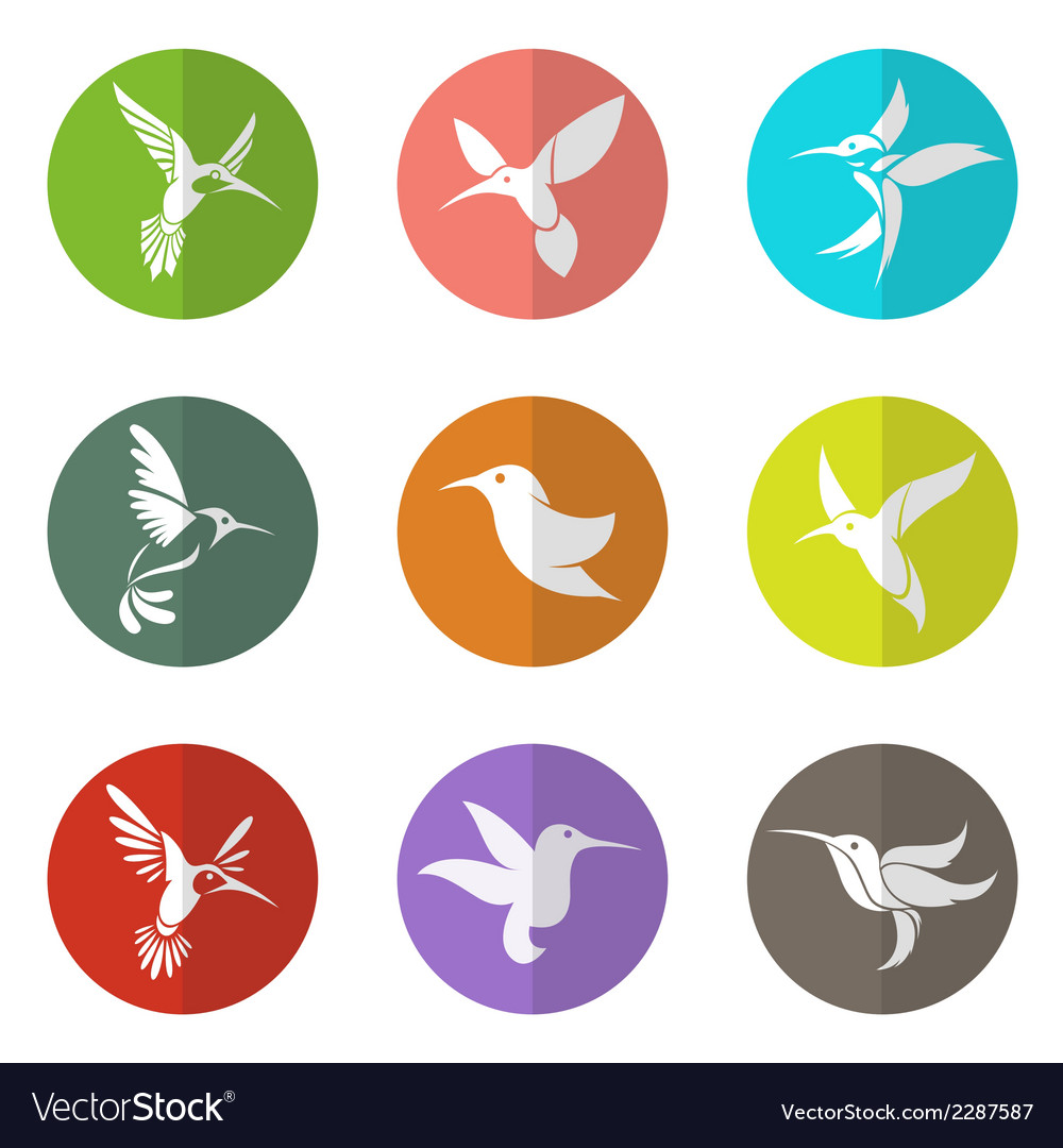 Group of hummingbird in the circle vector | Price: 1 Credit (USD $1)