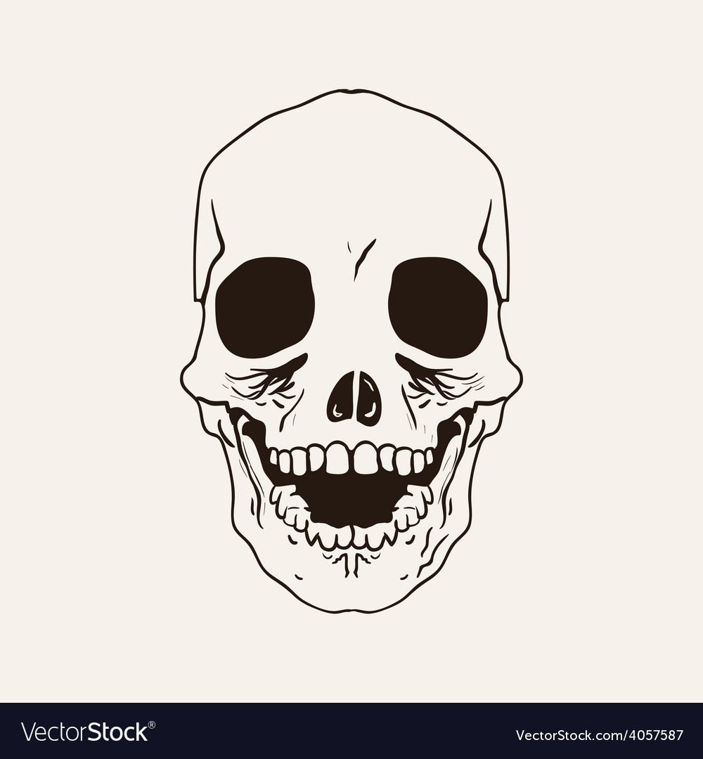 Sketch bones of the head vector | Price: 1 Credit (USD $1)
