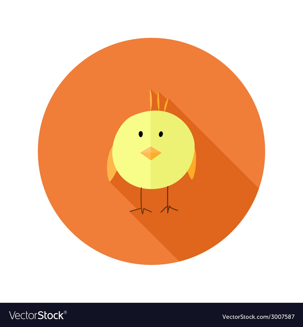 Yellow chicken flat icon over orange vector | Price: 1 Credit (USD $1)