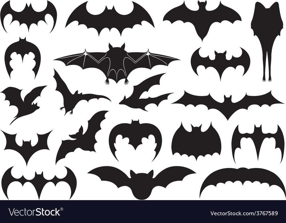 Different bats vector | Price: 1 Credit (USD $1)