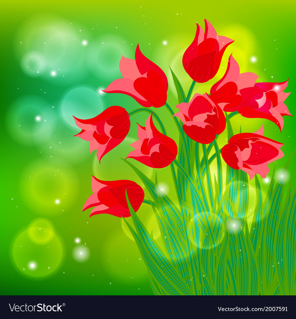 Card with red tulips on light green bokeh vector   Price: 1 Credit (USD $1)