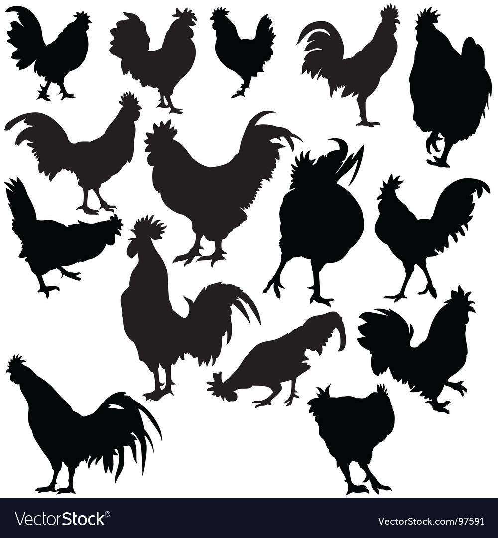 Rooster silhouettes vector | Price: 1 Credit (USD $1)