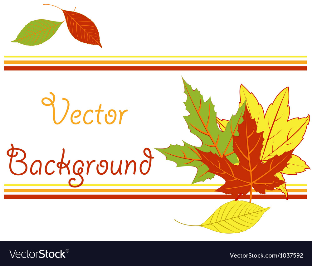 Bright pattern with autumn leaves vector | Price: 1 Credit (USD $1)