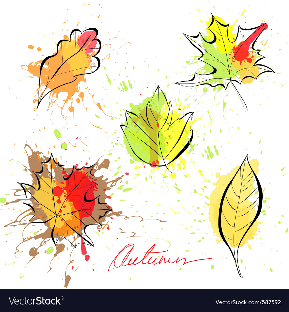 Set of autumn leaves vector | Price: 1 Credit (USD $1)