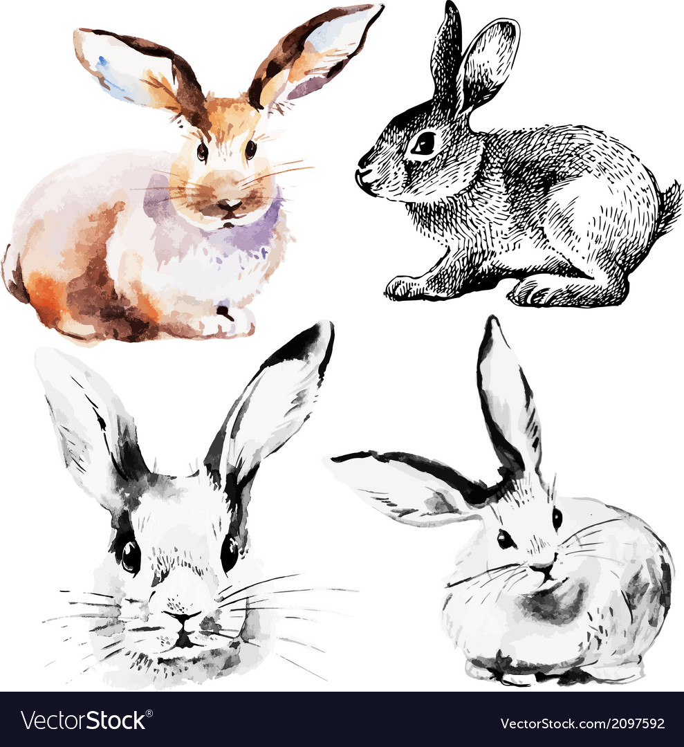 Set of easter rabbits vector | Price: 1 Credit (USD $1)