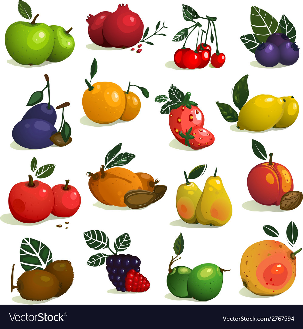 Fruits and berries collection vector | Price: 1 Credit (USD $1)