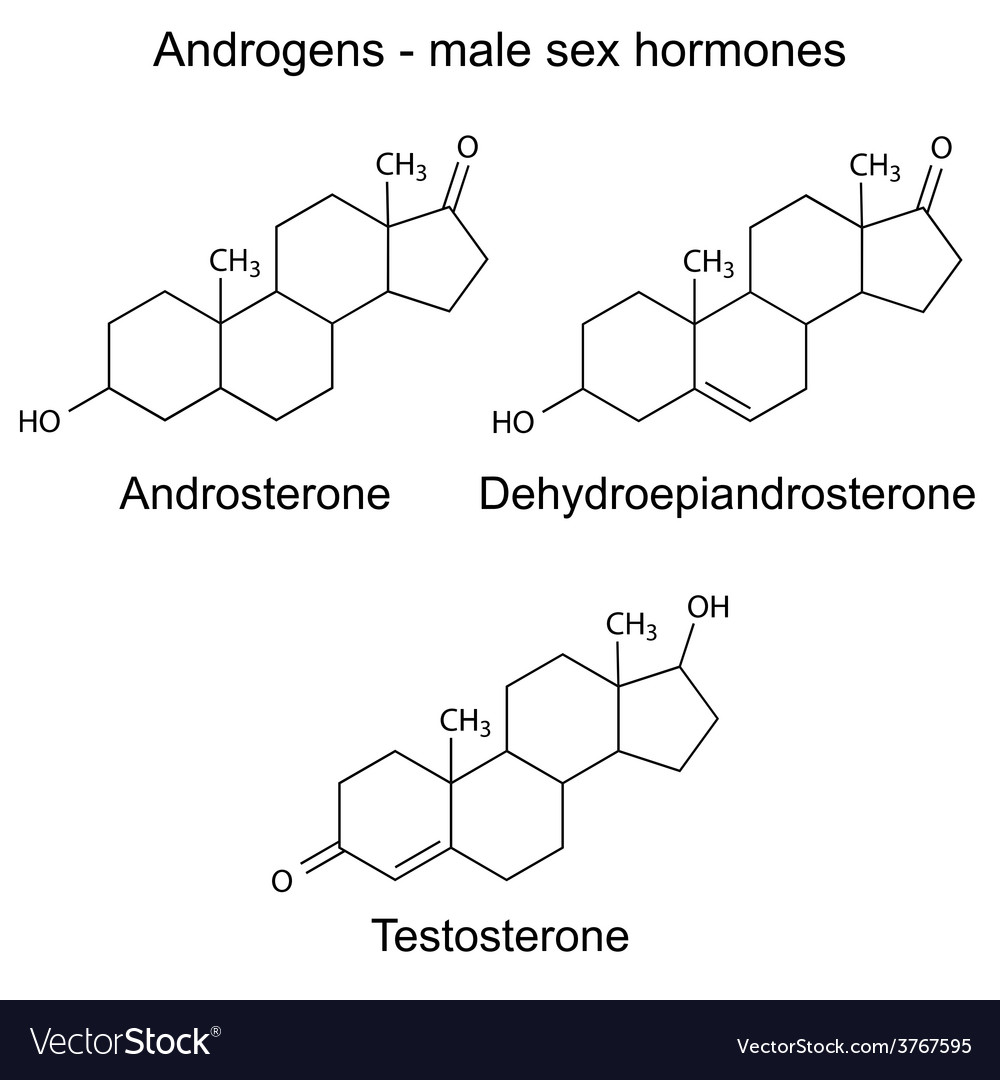 Chemical formulas of male sex hormones vector | Price: 1 Credit (USD $1)