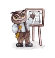 Cartoon owl concept design bird are isolated on vector