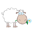 White sheep cartoon character eating a flower vector