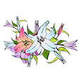 Lily flower bouquet vector