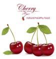 Cherry vector