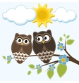 Two owls vector