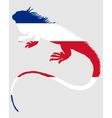 Iguana costa rica vector