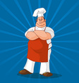 Confident cook on blue background vector