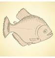 Sketch dangeous piranha in vintage style vector