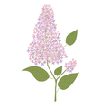 Branch of lilac vector