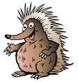 Hand-drawn of an echidna vector