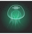 Jellyfish the underwater world vector