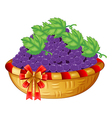 A basket of grapes vector
