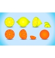 Lemon orange citrus set vector