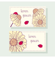 Business card set with ladybug and daisy vector