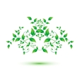 Isolated green leaf on white background vector