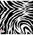 Zebra background with black stripes vector