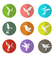 Group of hummingbird in the circle vector