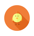 Yellow chicken flat icon over orange vector