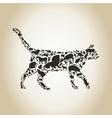 Cat an animal vector