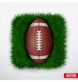 Icon american football ball in green grass vector