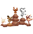 Animals and rocks vector