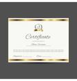Certificate with golden elements vector