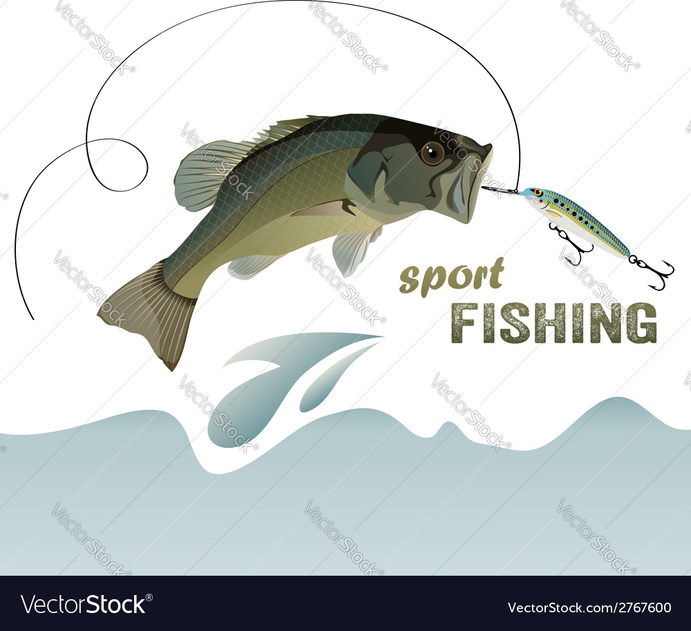 Bass fishing vector | Price: 1 Credit (USD $1)