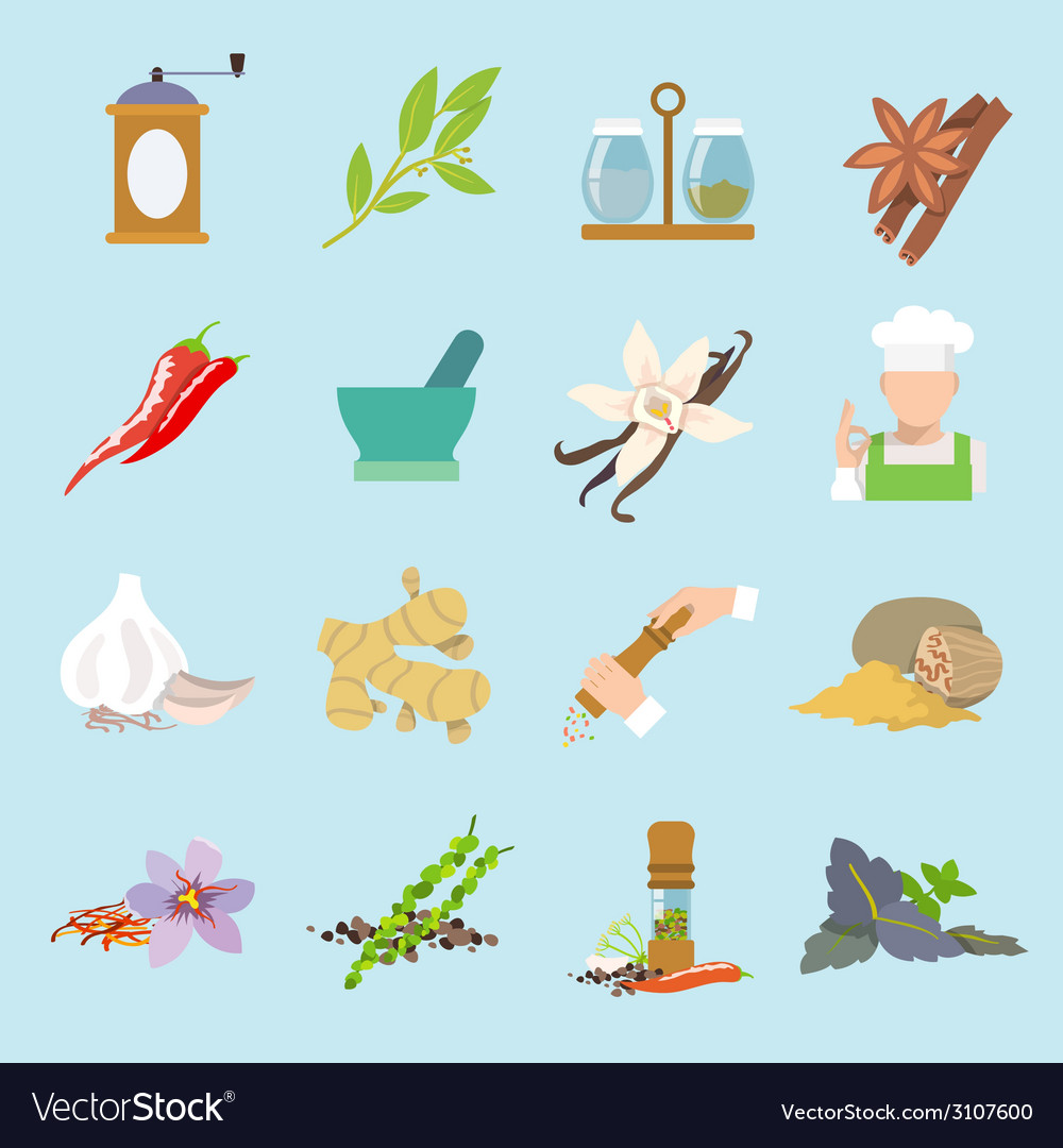 Spices icons flat vector | Price: 1 Credit (USD $1)