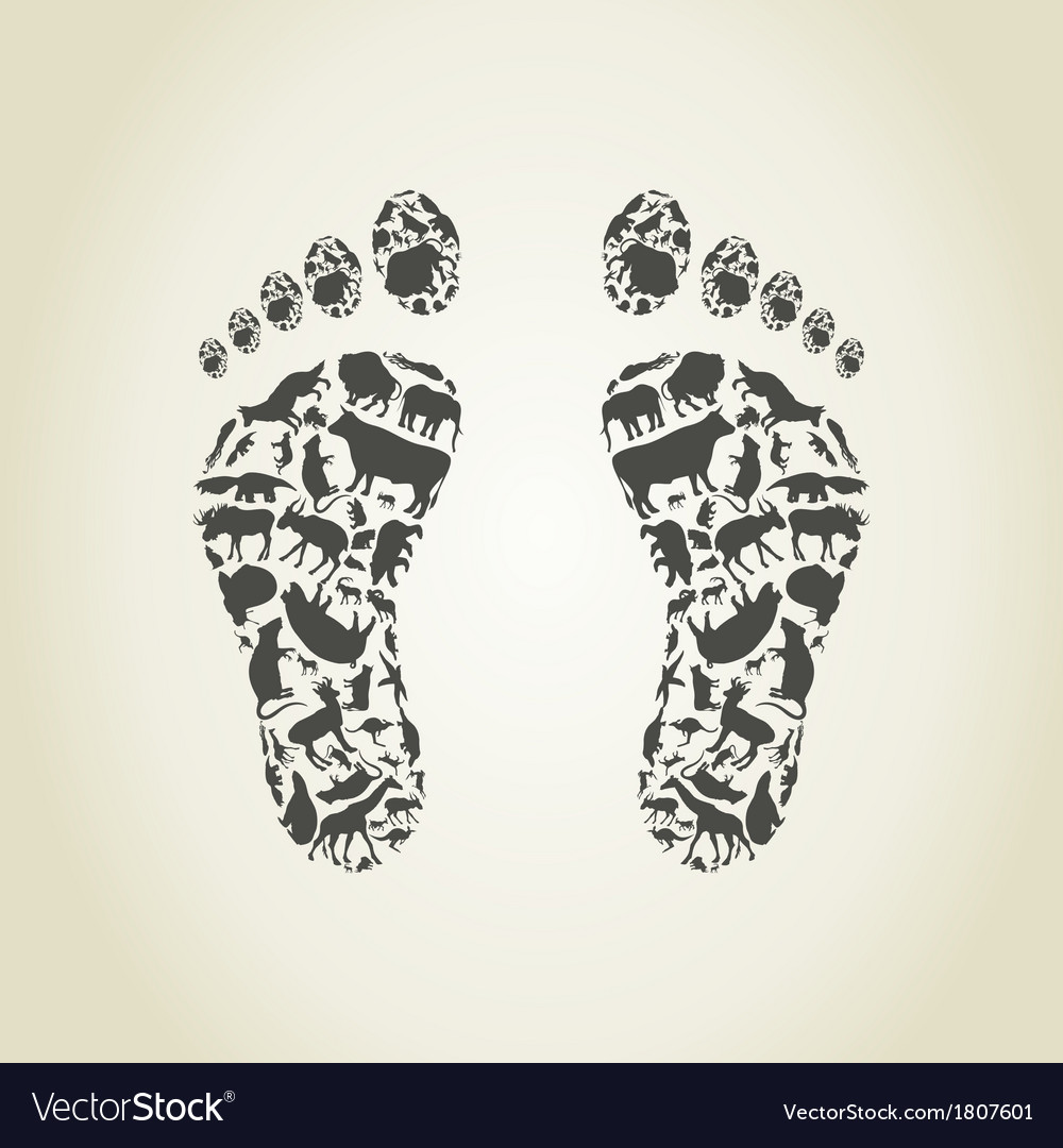 Foot an animal vector | Price: 1 Credit (USD $1)