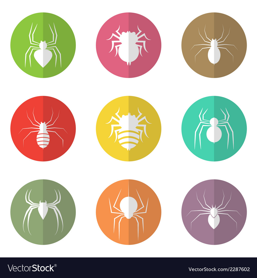Group of spider in the circle vector | Price: 1 Credit (USD $1)
