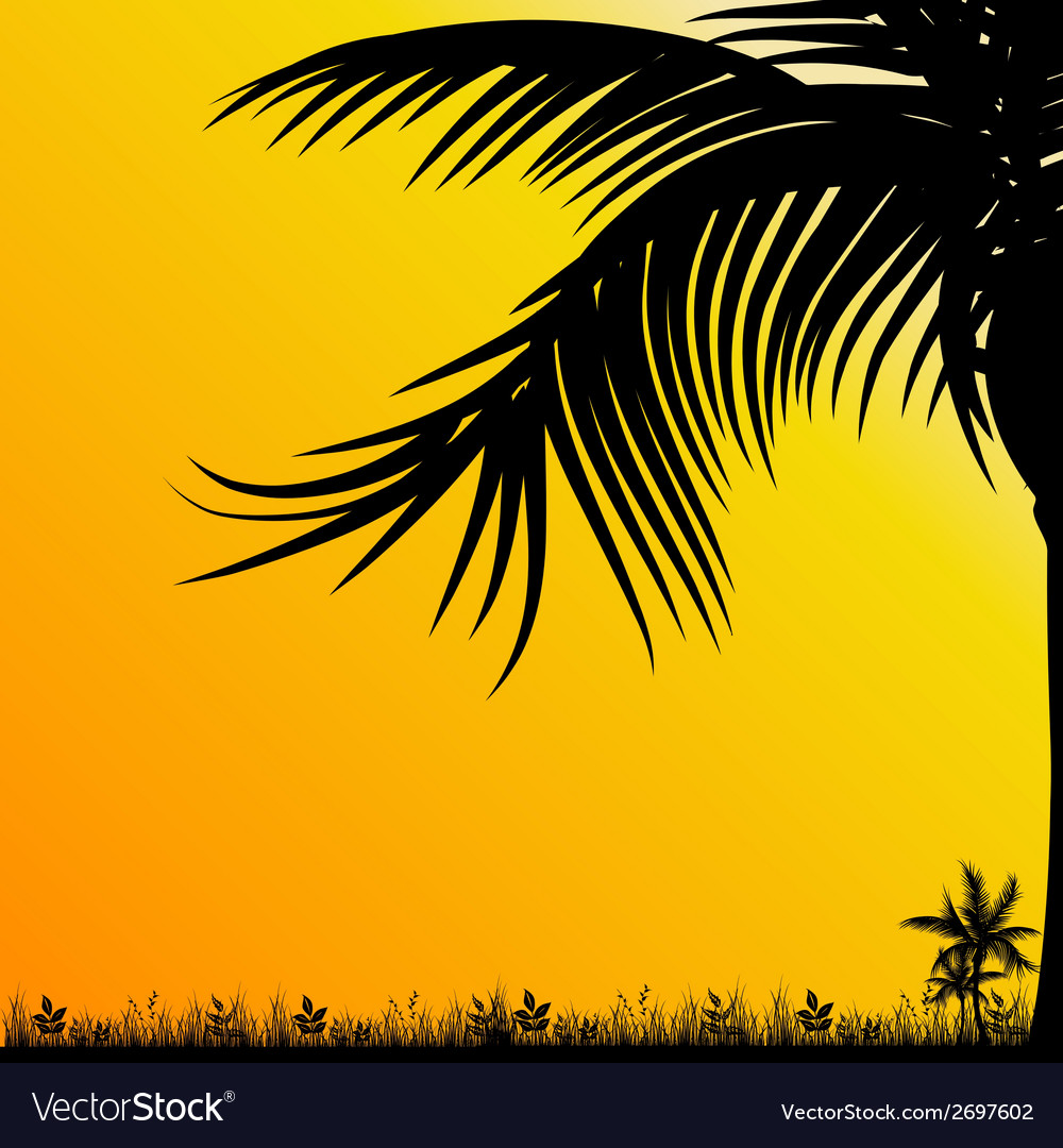 Palm tree for background black vector | Price: 1 Credit (USD $1)