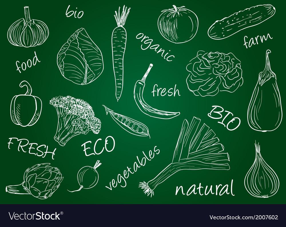 Vegetables doodles school board vector | Price: 1 Credit (USD $1)