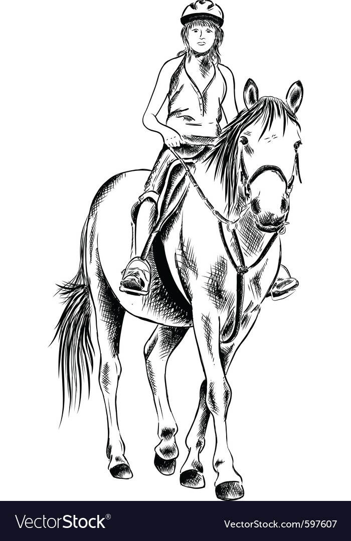 Horse rider sketch vector | Price: 1 Credit (USD $1)