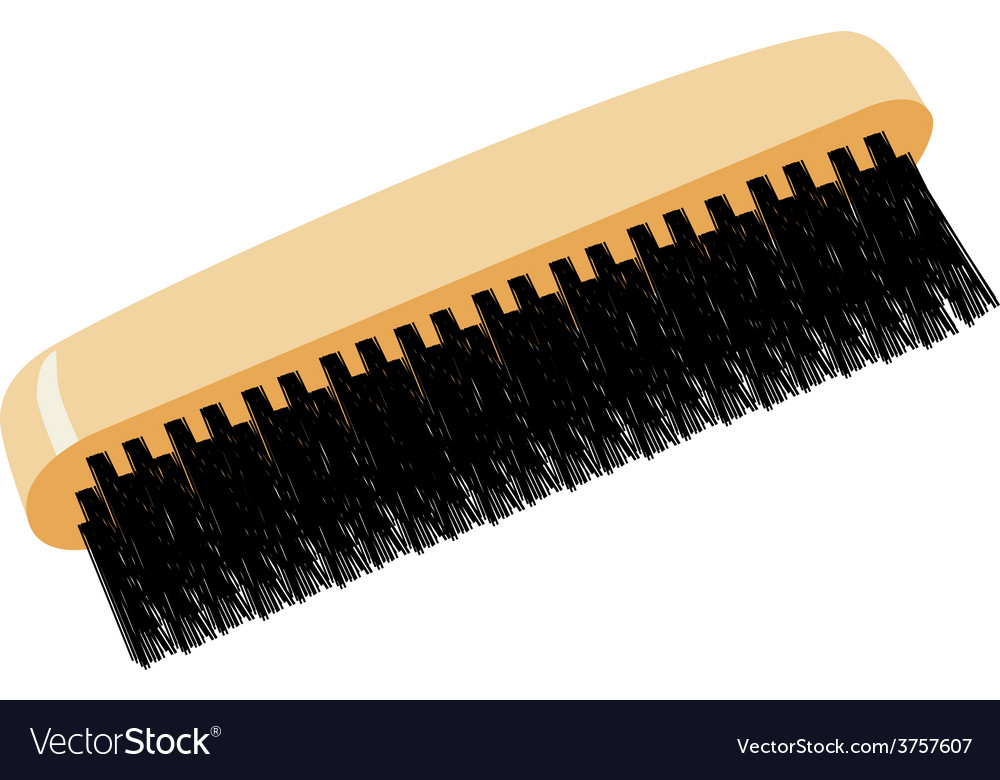 Shoe brush vector | Price: 1 Credit (USD $1)