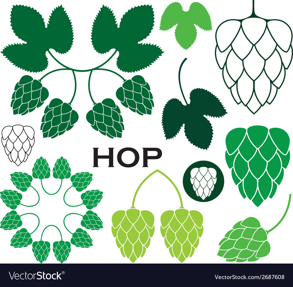 Hop vector | Price: 1 Credit (USD $1)