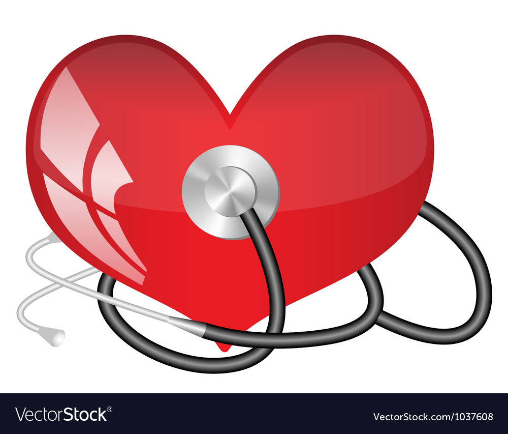 Medical stethoscope and heart vector | Price: 1 Credit (USD $1)