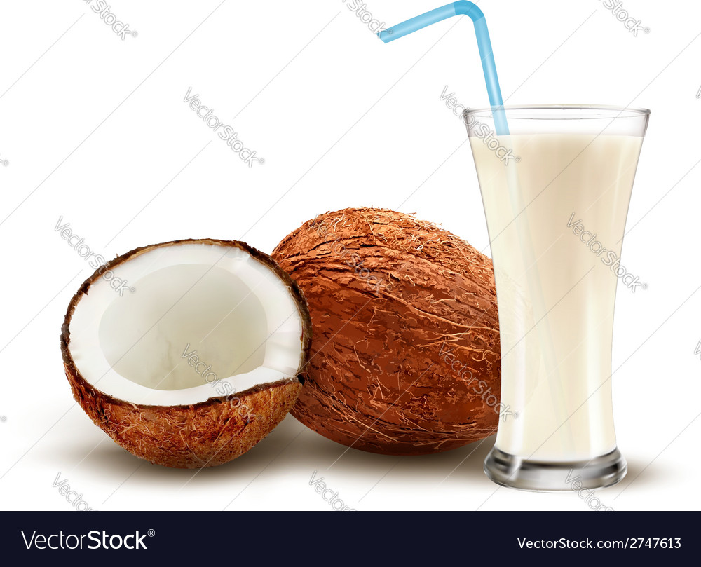 Coconut with a coconut milk cocktail vector | Price: 1 Credit (USD $1)