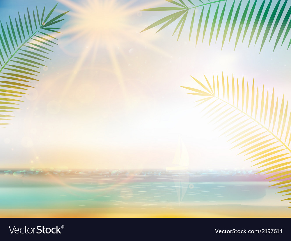 Palm and tropical beach design template vector | Price: 1 Credit (USD $1)